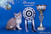 Dolce Gabbana - BEST BАBY г. Волгоград 23 декабря 2012г.