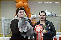 г. Пенза 17-18 ноя 2012г.