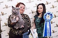 TOP CAT 2013